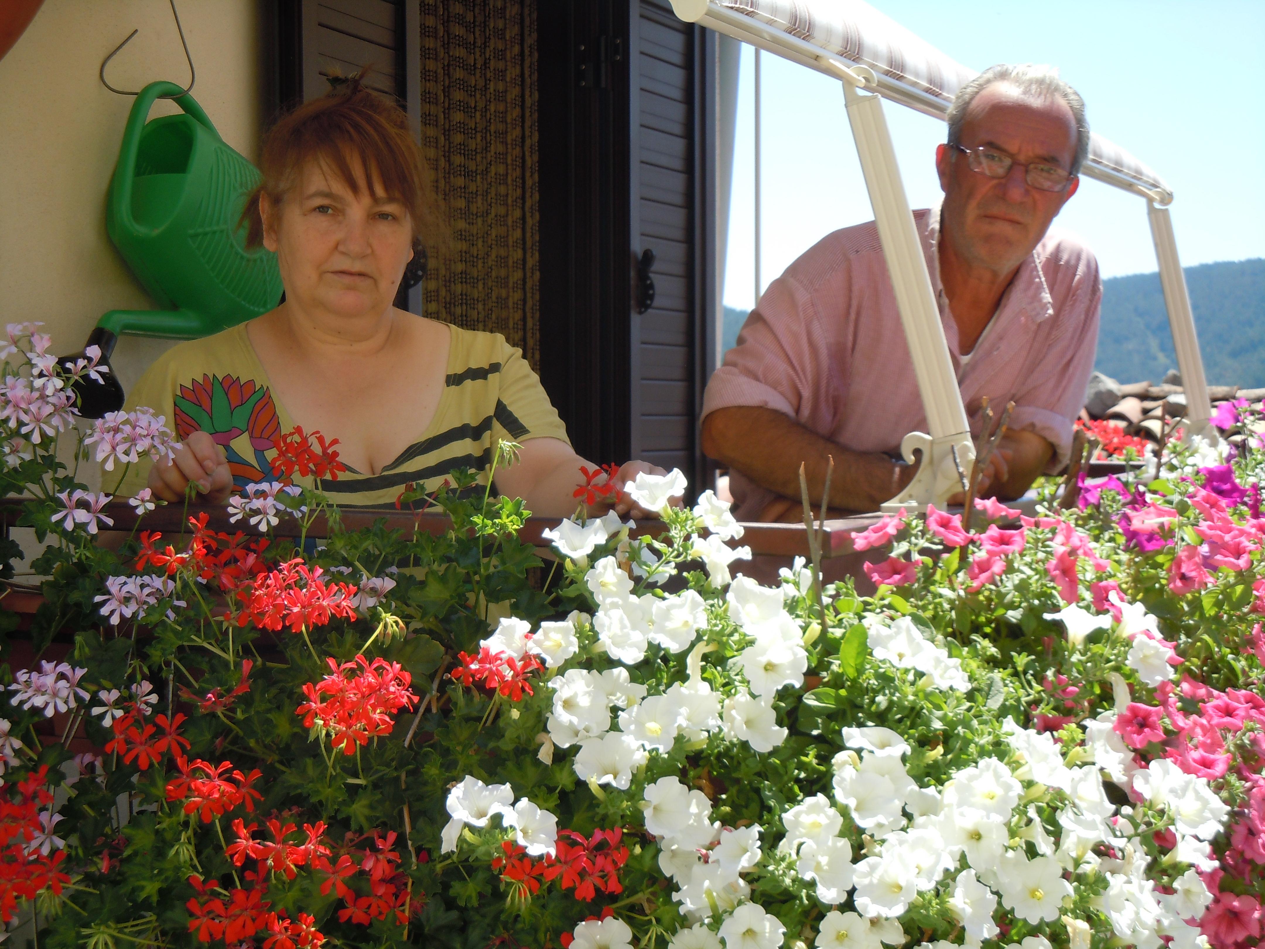 Luglio 2012 il nuovo corriere della sila for Surfinia balcone